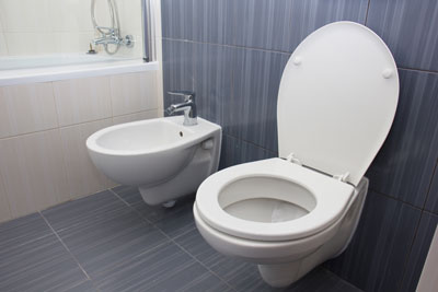bidet next to toilet