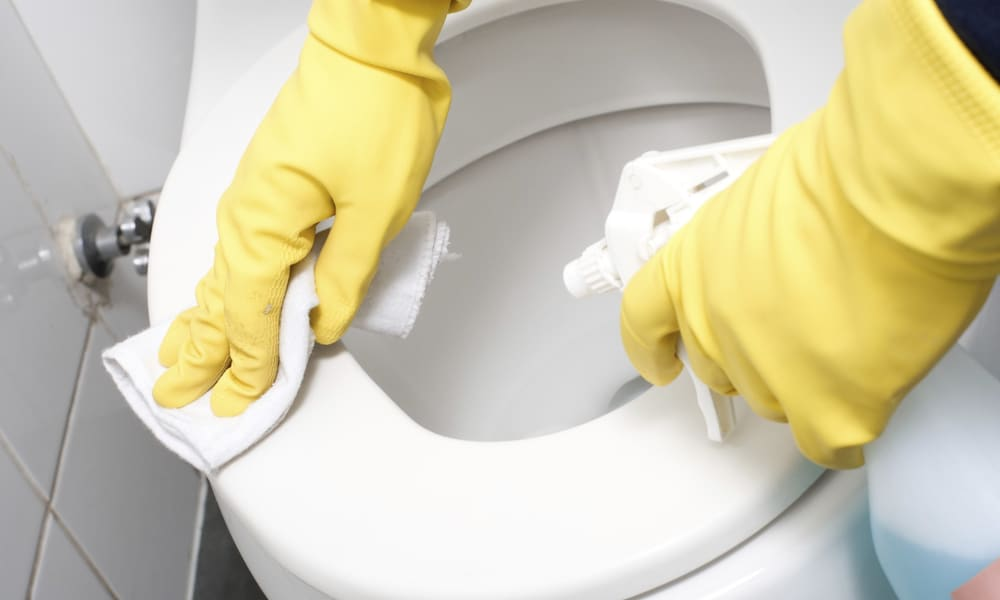 Method 1 Toilet Seat Cleaning with Bleach
